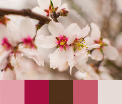 living-walldressers-almendro-en-flor-paleta-de-color