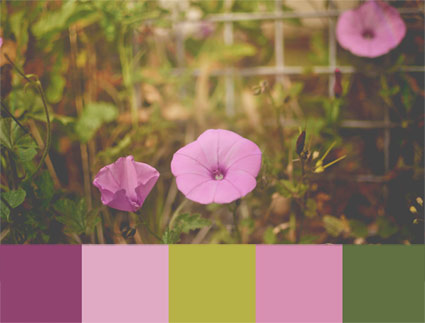 living-walldressers-paleta-de-color-con-campanillas